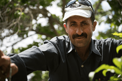 2015_Palestine_Newhouse Media_Life of a Palestinian Farmer_Nahed Kayed_106