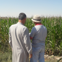 (Feature) Syrian Farmers